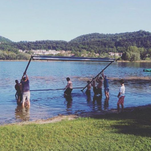 arbos-lago-film-festival